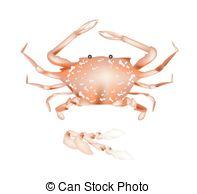 Crabbing Vector Clipart EPS Images. 7 Crabbing clip art vector.