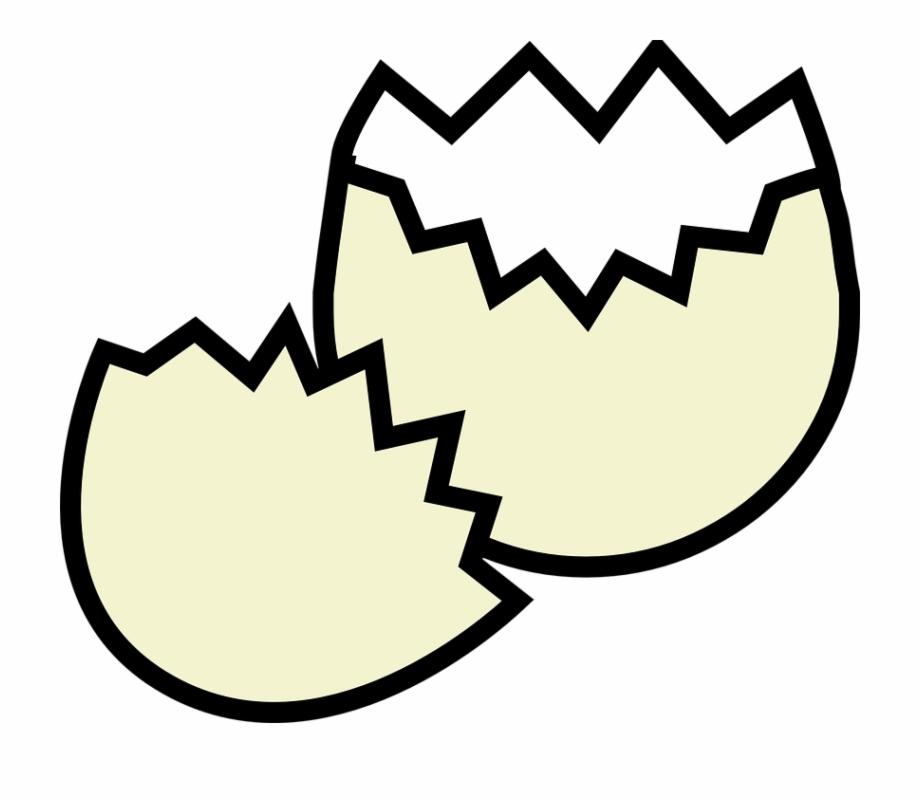Eggshell Cracked Broke Fragile Empty Easter.