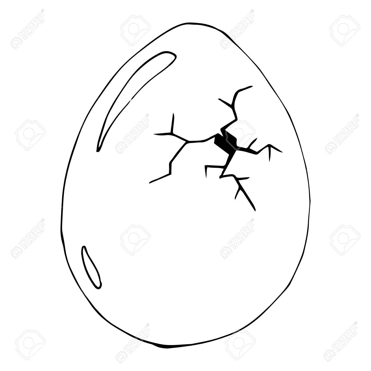 Cracked egg. Vector illustration of egg. Hand drawn cracked...