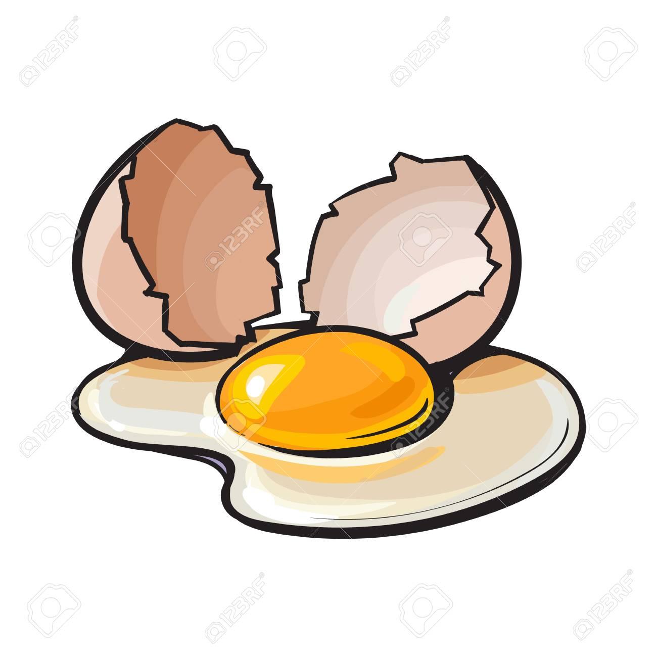 Cracked, broken and spilled chicken egg, sketch style vector...