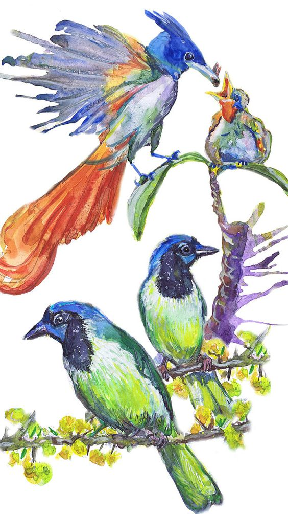 Watercolour Birds Clipart Commercial use Painted Bird Clip Art.