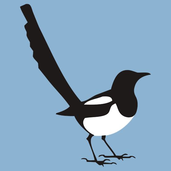 1000+ ideas about Magpie on Pinterest.