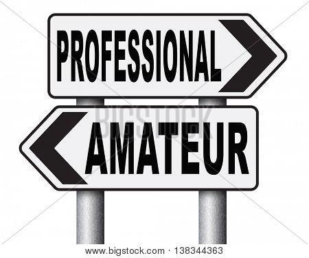 professional amateur craftsman expert novice or beginner skilled.