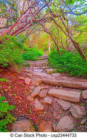 Stock Photos of Craggy Garden Trail on an autumn day csp23444733.