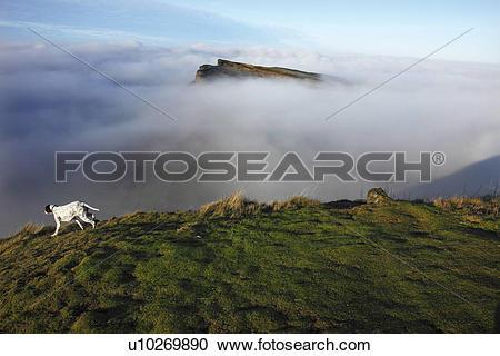 Stock Photography of Scotland, City of Edinburgh, Edinburgh. Fog.