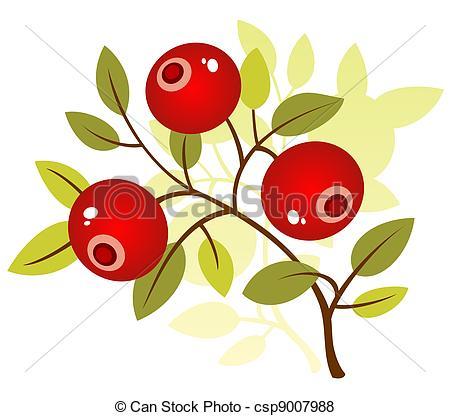 Cranberry Stock Illustration Images. 1,979 Cranberry illustrations.