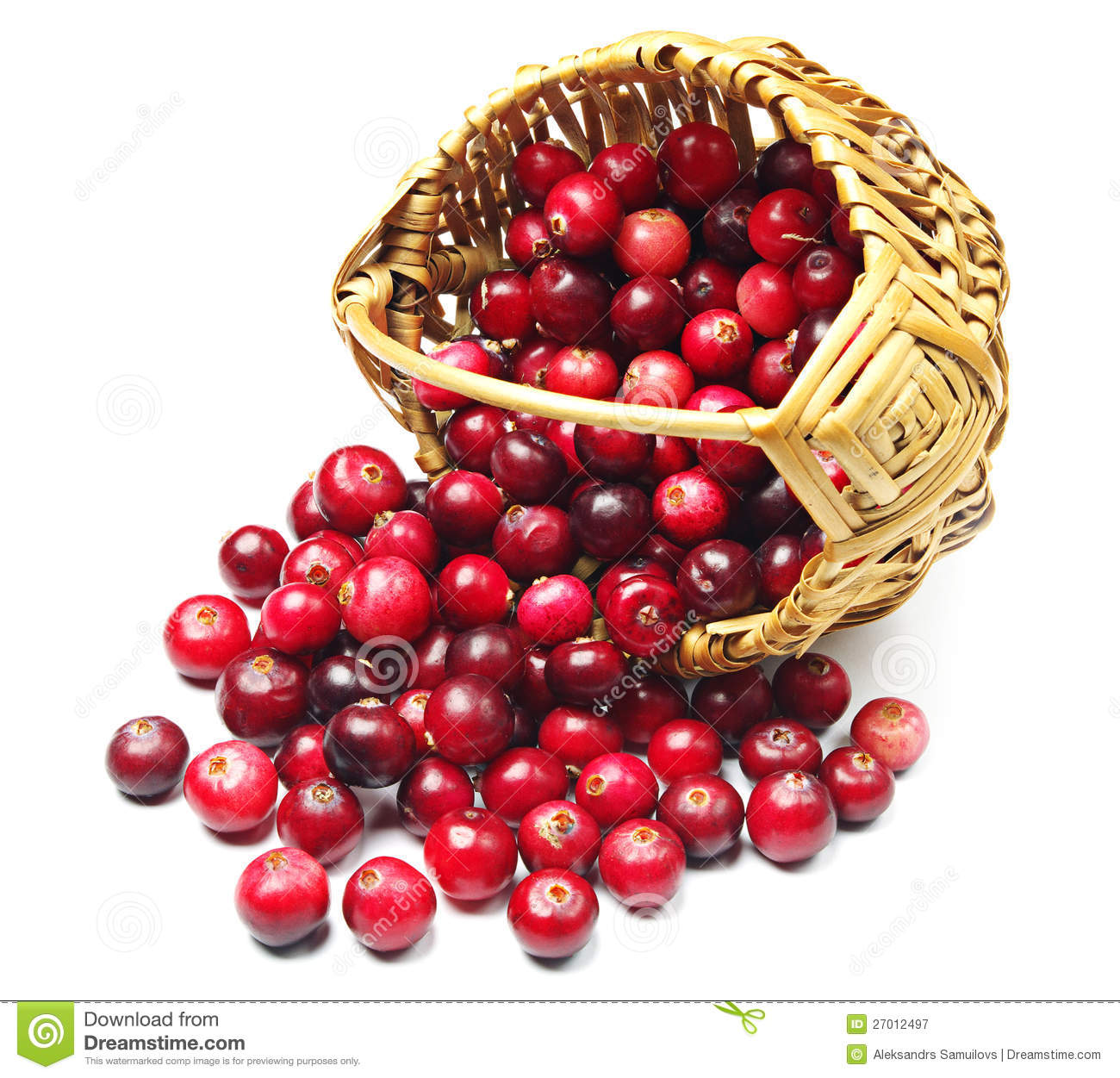 Cranberries Near The Basket Royalty Free Stock Photography.