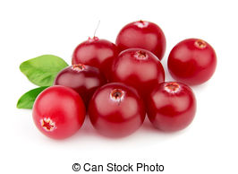 Cranberries Stock Photos and Images. 27,602 Cranberries pictures.