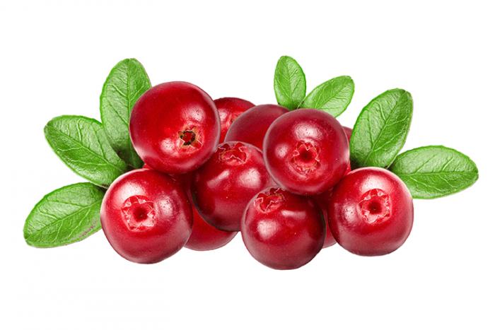 Cranberries Png & Free Cranberries.png Transparent Images #31601.