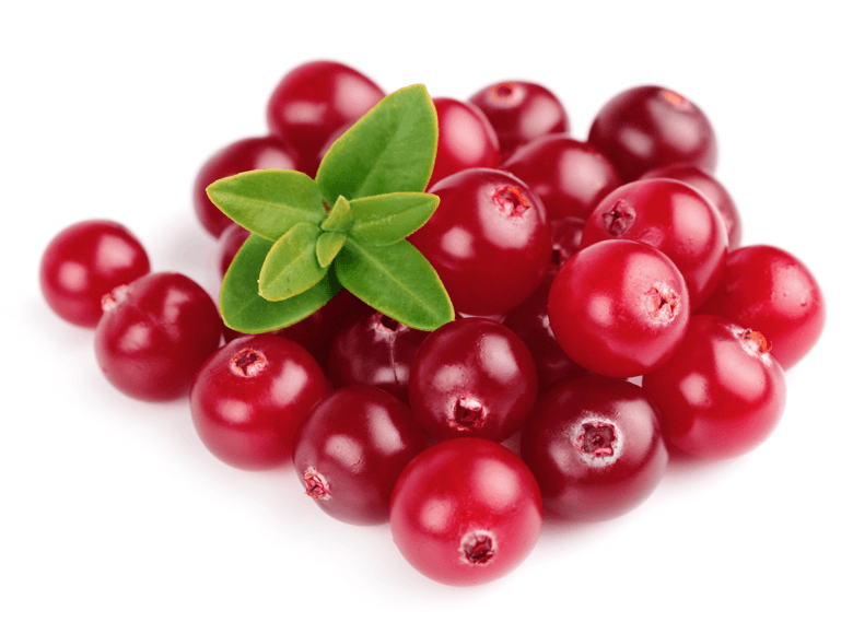 Cranberry PNG Images.