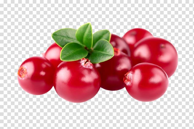 Cranberry Barbados Cherry Zante currant Lingonberry Huckleberry.