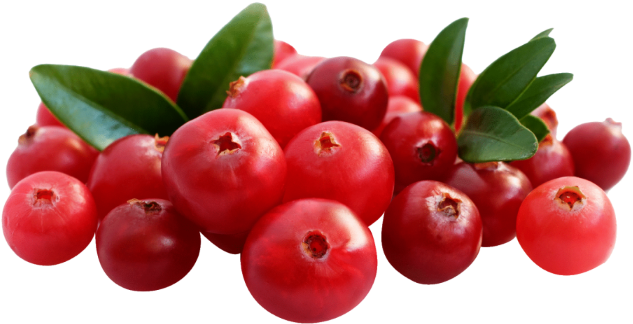 Download 1/2 Kg Chopped Cranberries.