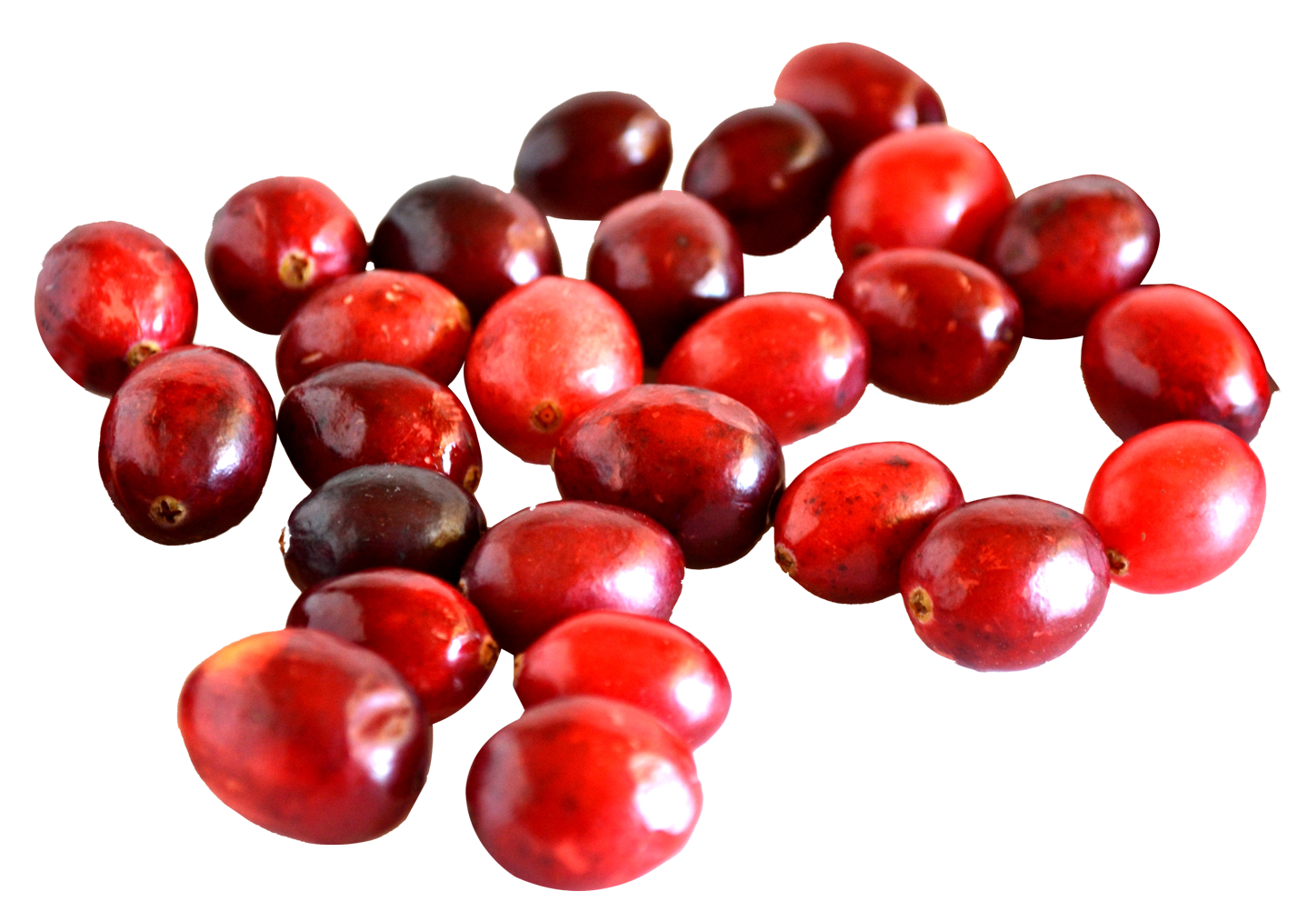 Cranberry PNG Image.
