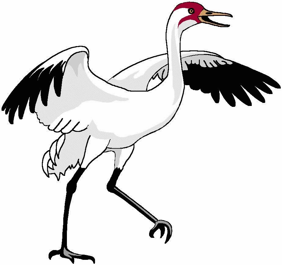 Within Crane Bird Clipart KcMnXKzGi.