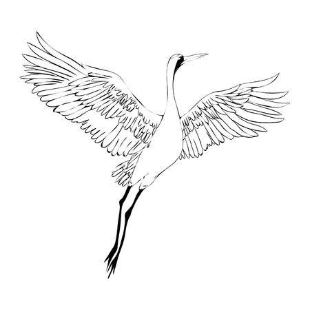 6,391 Crane Bird Stock Illustrations, Cliparts And Royalty Free.