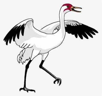 Free Crane Bird Clip Art with No Background , Page 2.