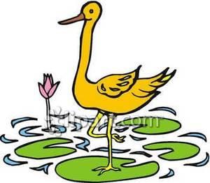 Crane On A Lily Pad.