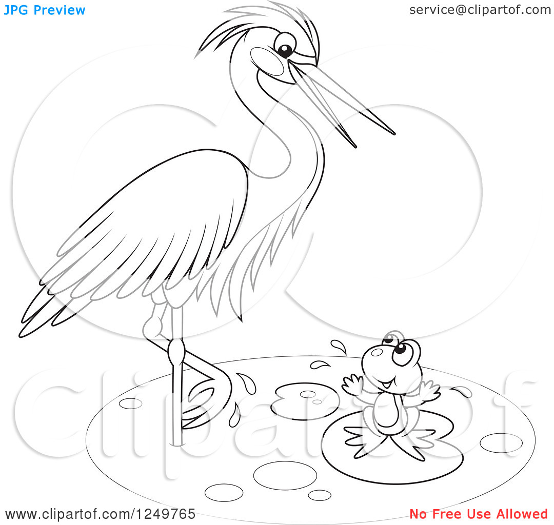 Clipart of a Black and White Wading Heron Bird Talking to a Frog.