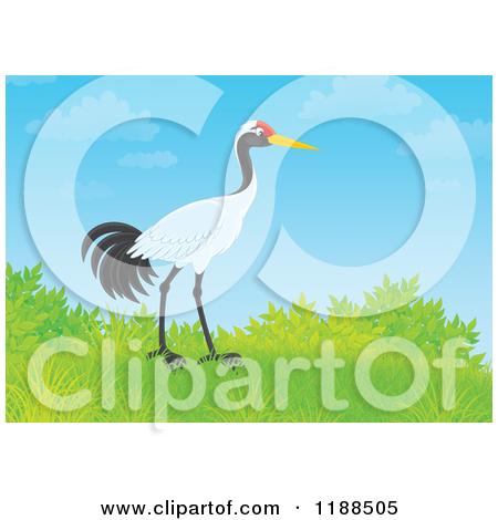 Cartoon of a Sarus Crane Bird on a Hill Against Blue Sky.