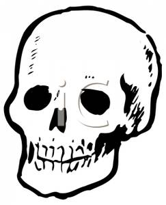 of a Front View of a Skull.