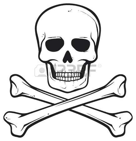 3,622 Skull Cranium Stock Vector Illustration And Royalty Free.