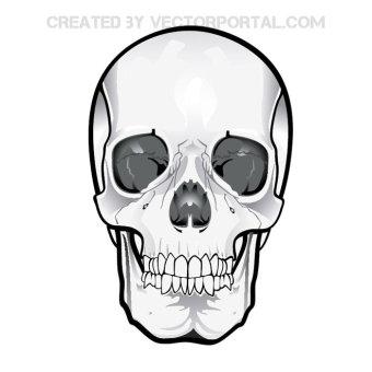Free Devil Skull Vector.