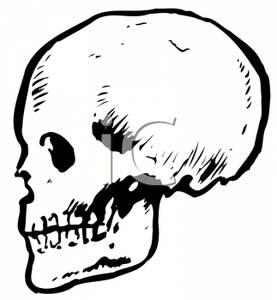 of a Skull.
