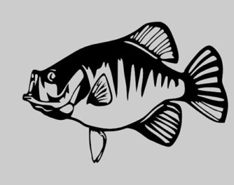 Free Crappie Cliparts, Download Free Clip Art, Free Clip Art on.