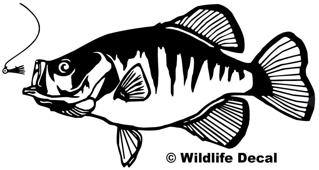 Crappie Decal MD Fishing Wildlife #1 With Jig Sticker.