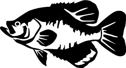 Amazon.com: Express Yourself Products Black Crappie Wall Decal.