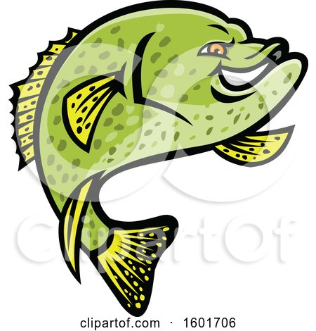 Clipart of a Jumping Tough Green Crappie Fish Mascot.