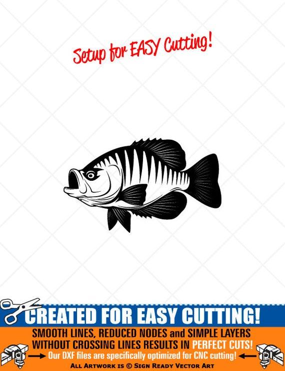CRAPPIE FISH.