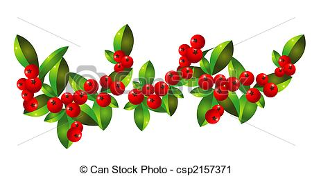 Hawthorn Stock Illustration Images. 221 Hawthorn illustrations.