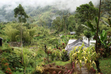 Crater Mountain increasing gold production, PNG.