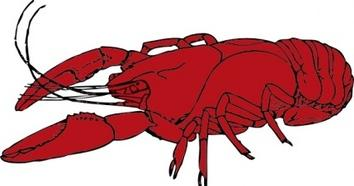 Crawfish clip art Free Vector.