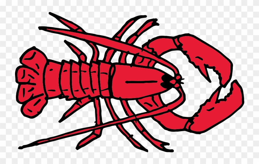 Free Crayfish Clipart.