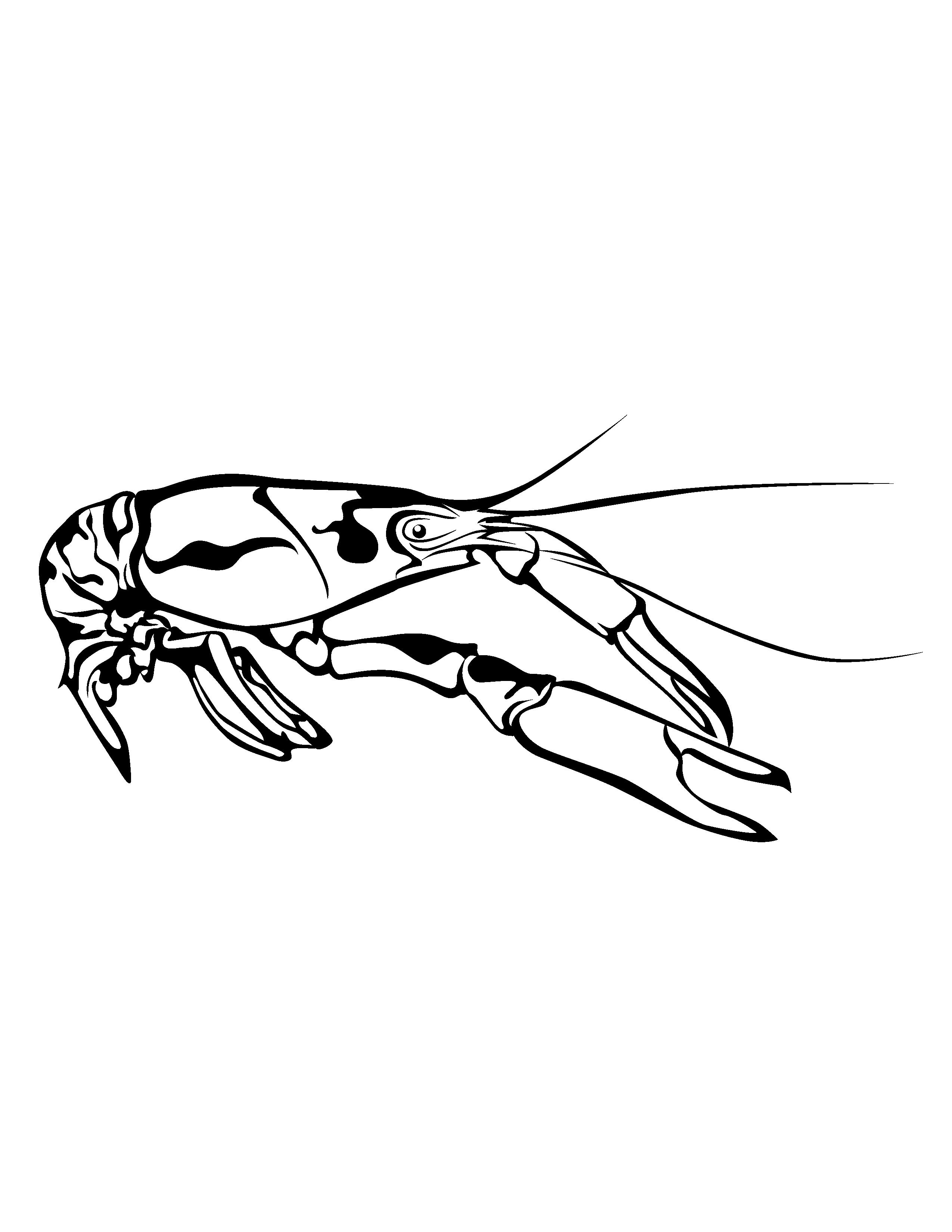 Black & White Outline Crawfish Clip Art.