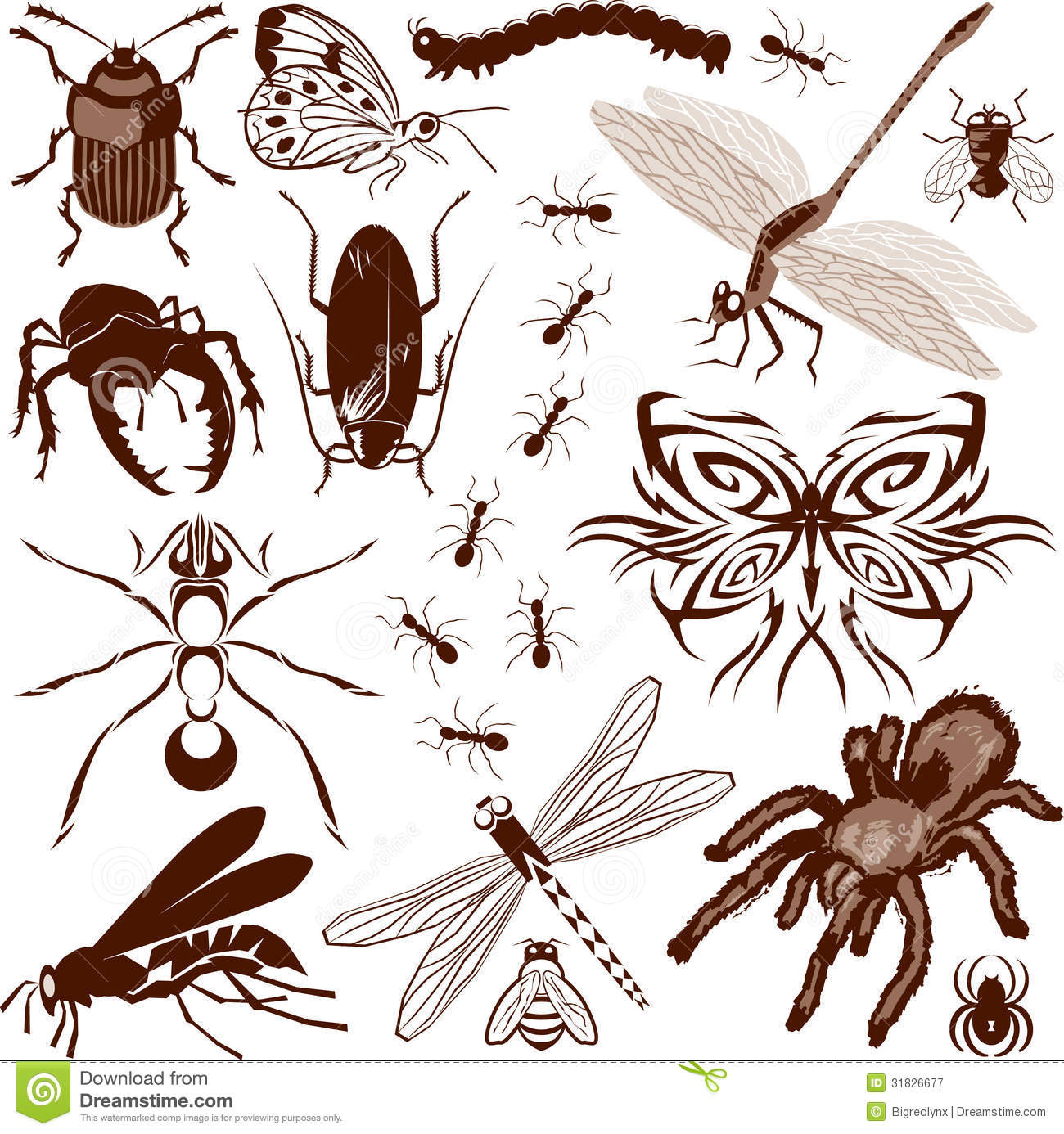Creepy Crawlers Stock Illustrations.