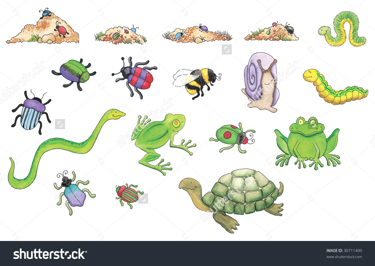 Creepy Crawlers Stock Photo 30711400 : Shutterstock.