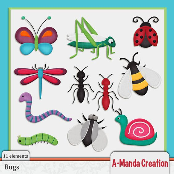 Bugs and Creepy Crawlies Commercial Use Clip Art.