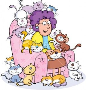 Crazy Old Cat Lady.