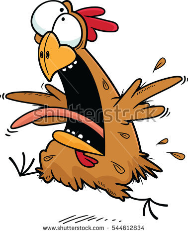 Crazy Chicken Stock Images, Royalty.