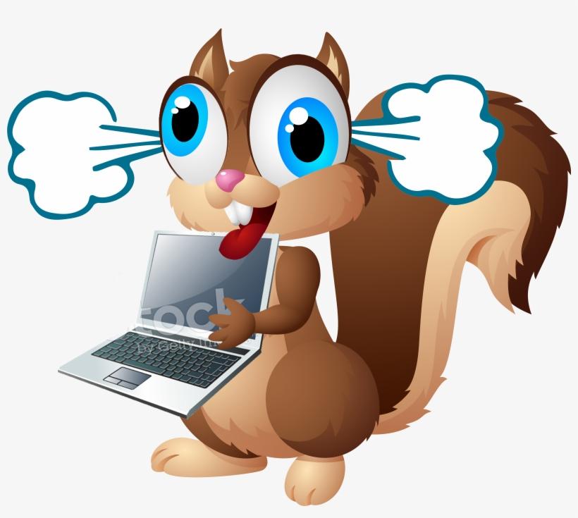 Display Crazy Squirrel Laptopsteam.