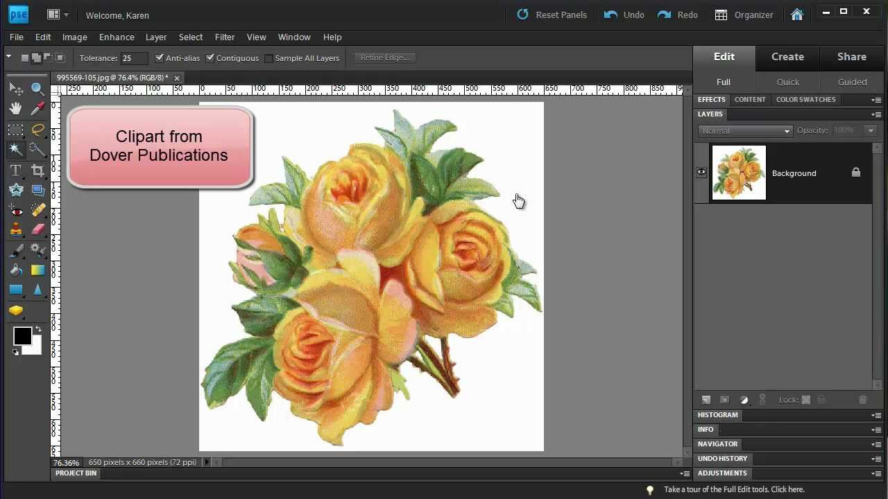 Photoshop Elements: Make a Floral Pattern from Clipart.