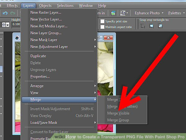 How to Create a Transparent PNG File With Paint Shop Pro: 5 Steps.