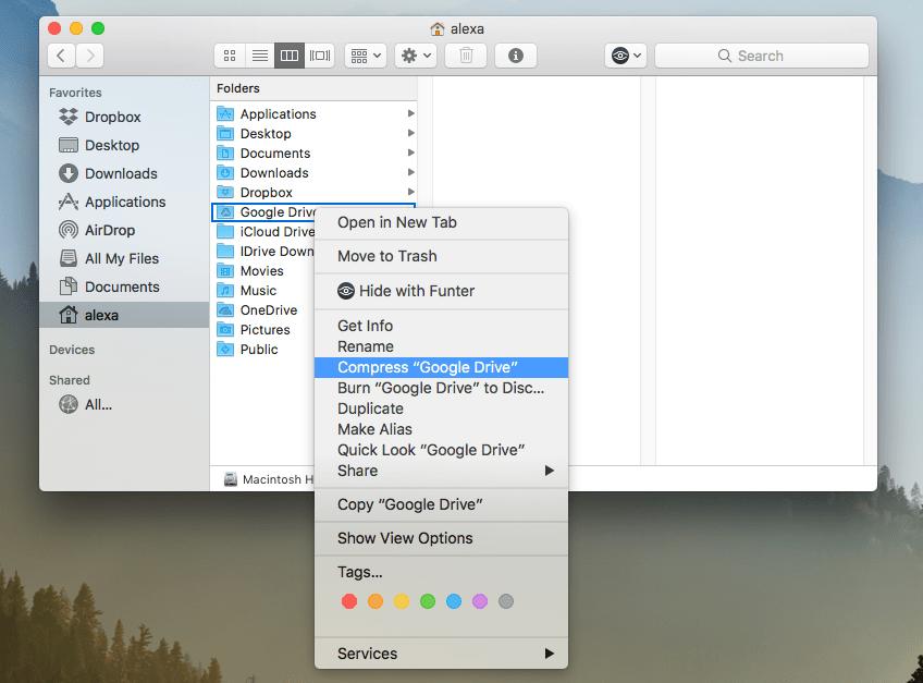 Mac Home Folder.