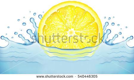 Bright Citrus Fruit Slices Transparent Stock Photos, Royalty.