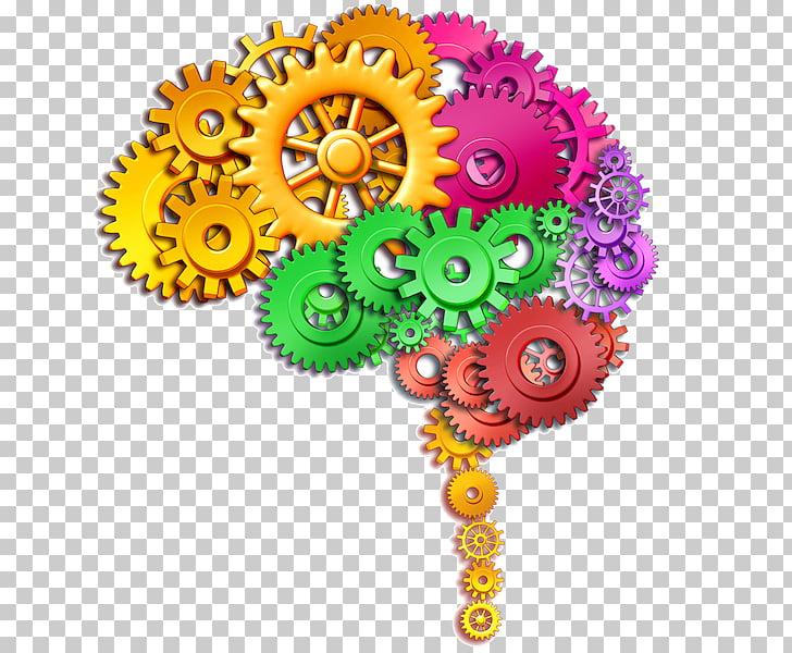 Human brain Stock photography Function , creative brain PNG.