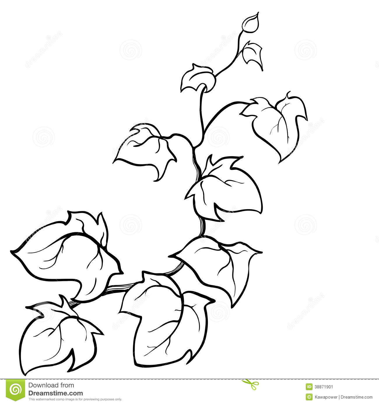 Creeping plant clipart Clipground