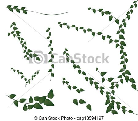 EPS Vectors of A Set of Creeper Plant on White Background.